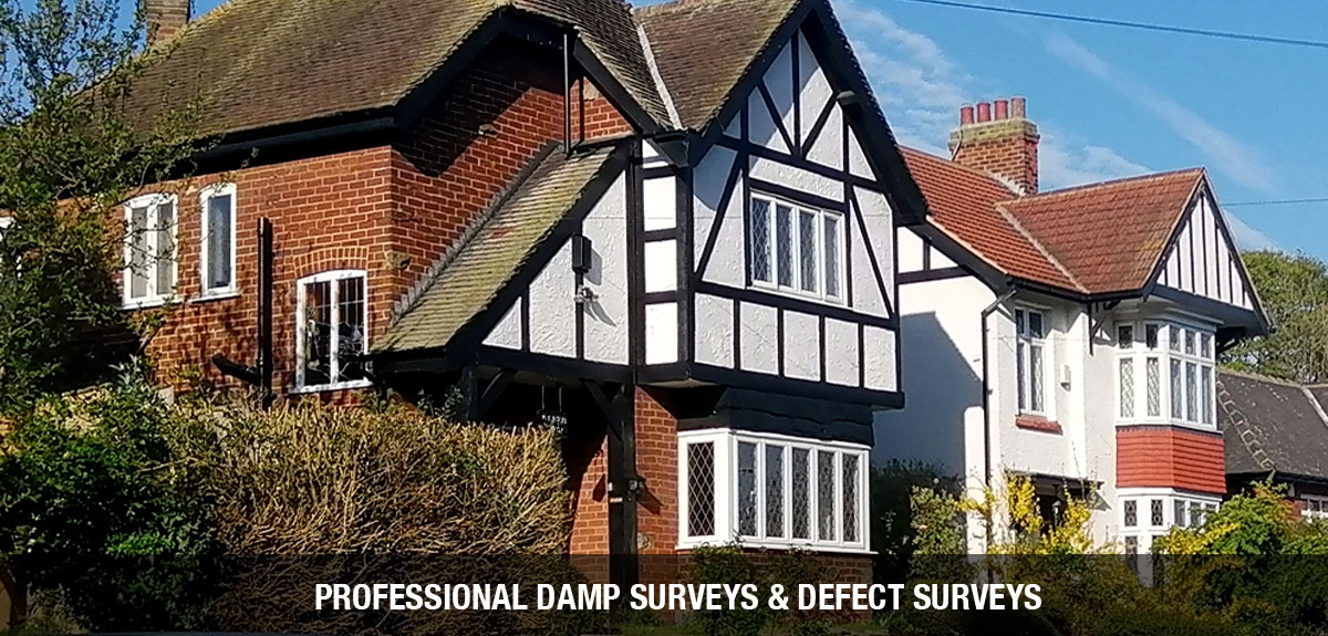 Damp and defect surveys - North-East